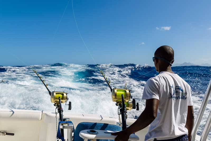 Mru-Billfish-Release-Day2-48